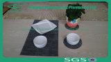 Mat Placemat Rubber Non-Slip High Qualitity Plastic Place Mat