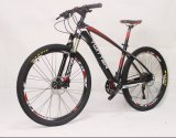 26'' Steel Frame Suspension 21 Speed Customized Mountain Bike