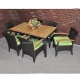 Commercial Rattan Furniture Dining Set (DS-06035)