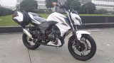350cc Two Cylinder Water Cooled Heavy Bike Racing Motorcycle