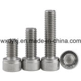 Wholesale Stainless Steel Head Socket Cap Machine Screw