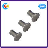 Carbon Steel Non-Standard Mushroom Head Semi-Tubular Rivet/Screw for Machinery Industry