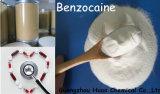 Benzocaine Anesthetic Anodyne Relieve Pain Powder (CAS: 94-09-7)