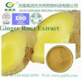 High Quality Natural Organic Ginger Root Extract/Gingerol