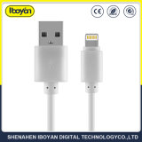 Passed Ce RoHS FCC USB Charge Data Cable for iPhone 5/6/7/8/X
