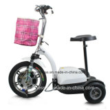 Ce Approved Adult Unusual Brushless Geared Motor 3 Wheel Electric Scooter for Adult