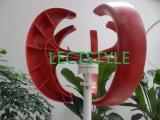 200W 12V24VDC Vertical Axis Wind Turbine Generator for Sale Light