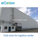 Frozen Products Cold Storage for Large Logistics Distribution Center