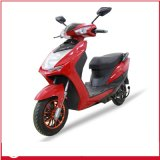 Cheapest Electric Scooter 500W, 20ah Stable Quality