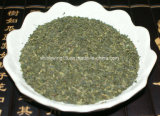 Bulk Wholesale Green Tea Broken Leaves Green Fanning