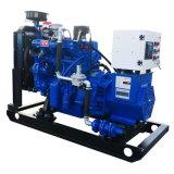 Ce ISO 25kw Natural Gas Turbine Generator /Biogas/LPG/Biomass Farm