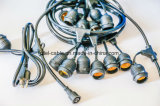 Commercial LED String Lights Cord 48′ or 64′