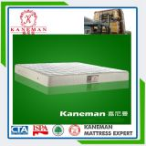 Tight Top High Quality Bonnell Spring Mattress for Home Furniture
