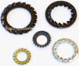 Tooth Lock Washer / Serrated Washer (DIN6798)