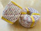 Polypropylene Rope Nylon Rope PP Danline Mooring Rope 3 Strands PP Danline Rope PP Rope Plastics Rope