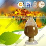 100% Natural Galla Chinensis Extract Tannic Acid 98% Good Quality