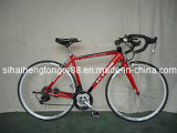 Red Sport Bicycle with Lowest Price (SB-005)