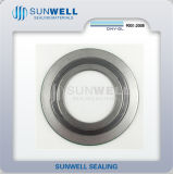 316 (L) Graphite Cgi Spiral Wound Gaskets with Inner and Outer Ring (SUNWELL)