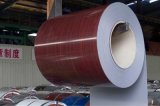 Color Coated Galvanized/Galvalume Steel in Coil/Sheet (RAL Standard)