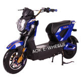 1000W Brushless Motor High Quality Electric Motorcycle (EM-012)