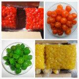 Dry Fruit From China (kumquat, Kiwi, cherry, apple, strawberry, papaya, peach, apricot, pear)