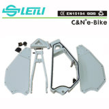 Carbon Bike Frame for Snow Fat Tyre Bike
