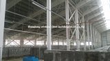 Easy Installation Steel Structure Chicken Poultry Shed House