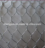 Stainless Steel Hexagonal Wire Netting for Chicken