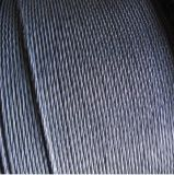 Galvanized Steel Wire Strand Tongguan Brand