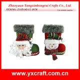 Christmas Decoration (ZY15Y142-1-2) Christmas Promote Product Shoes Brand
