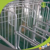 Pig Farm equipment Best Selling Products Pig Stall
