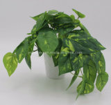 Home Decoration Artificial Bonsai Philodendron Leaves