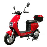 Moped 60V 48V 800W 350W 500W Lithium Power Electric Bike Scooter (Surfer)