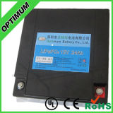 12V 24ah LiFePO4 Battery EV Battery Pack