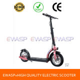 Hot Electric Standing Scooter with 300W Hub Motor