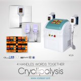 CE Approved Cryolipolysis Beauty Slimming Equipment