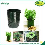 Onlylife BSCI Ecofriendly Weatherproof Grow Bag Garden Planter