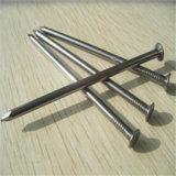 Factory Price Common Nail/ Iron Nail