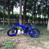 20 ′′ Fat Tyre Electric Bike with 36V 350W Brushless Motor