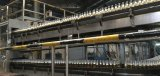 Beer Filling Crown Capping Labeling Packing Machine with Best Price