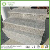 G623/ Rosa Beta Very Competitve Price Quarry Owner Grey Color Granite