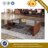 Competitive Price Living Room Furniture Retangle Glass Table Top Coffee Table (HX-WL048)
