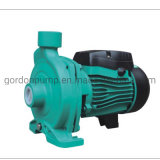 Cast Iron Cpm Series Booster Centrigual Pump with Stainless Steel Impeller