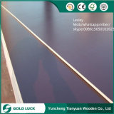 21mm Marine Lminated Shuttering Film Faced Plywood Building Material Board