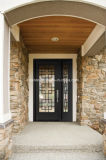 Interior Single Swing Frosted Glass Iron Entrance Door with Sidelignt