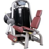 Dhz Seated Leg Extension/Chinese Manufacturer/Commercial Gym Machines