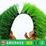 Football Grass Futsal Green Field