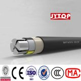 Nayy Cable Nyy XLPE Insulated Sta Armored PVC Sheathed Power Cable N2xy