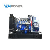 10-1500kw Natural Gas Electric Generator