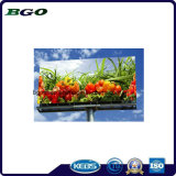 PVC Frontlit Roll up Flex Banner Printing (840dx840d 9X9 440g)